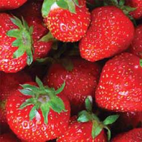 06-Strawberry