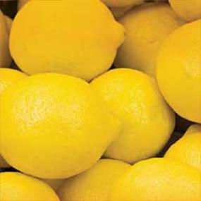 07-Yellow-Lemon
