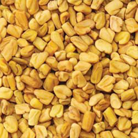 09-Local-Fenugreek