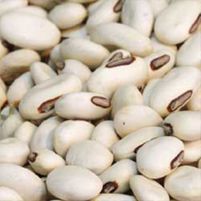 24-Local-Haricot-Beans